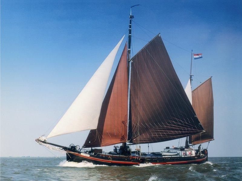 Zwarte-Valk(1)